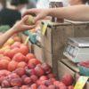 Gdzie szukać zdrowej żywności?